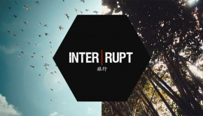 Interrupt (Paul Wex)